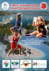 2013 Bayanlar Türkiye Şampiyonası