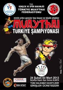 2013 Türkiye muaythai şampiyonası